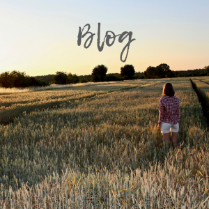 Blog, Tierisch wildes Leben, Feld, Sonnenuntergang, Natur, kariertes Hemd Lara Kunst,