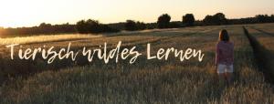 Tierisch wildes Lernen, Feld, Sonnenuntergang, Natur, kariertes Hemd, Lara Kunst