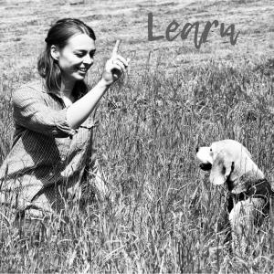 Tierisch wildes Lernen, Lernen, Tiermedizinische Fachangestellte